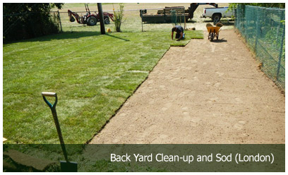 Back Yard Clean-up and Sod (London)
