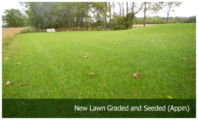 New Lawn Graded and Seeded (Appin)