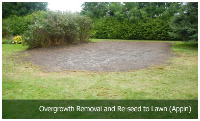 Overgrowth Removal and Re-seed to Lawn (Appin)