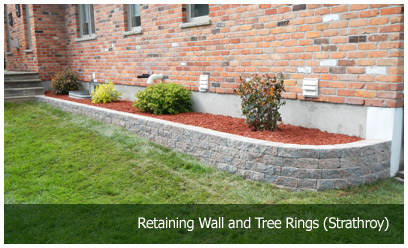 Retaining Wall and Tree Rings (Strathroy)